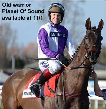 Planet Of Sound racehorse