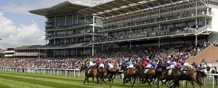 York races Ebor meeting betting