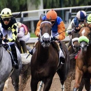 2020 Preakness Stakes Latest Betting Tips