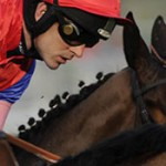 Profile picture of Irish Big Race Trends