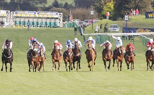 Ayr Gold Cup betting
